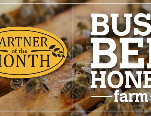 PARTNER OF THE MONTH: Busy Bee Honey
