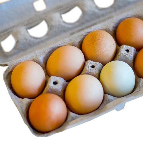 LR Eggs 1920x1920