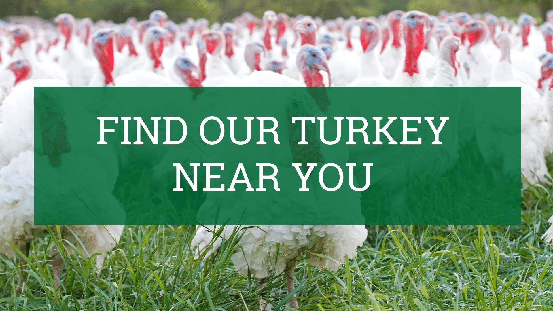 Find Turkey Near You